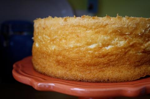 grapefruit chiffon cake