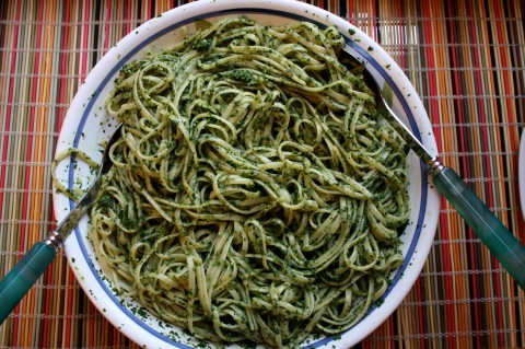 Kale Pesto - Sweet and Savory Kitchens