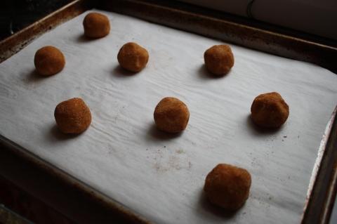 Snickerdoodle dough
